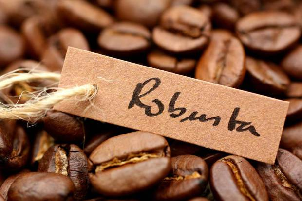 kaffee_robusta_f306b98d11